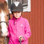häst vid hand